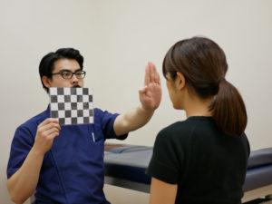脳神経系の視神経機能テスト