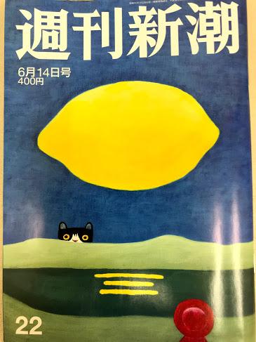 週刊新潮 整体 整骨 カイロプラクティック 雑誌 メディア 有名人